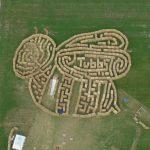 Straw maze 2014